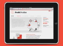 Webseite der Unternehmensberater von Profit Profiler